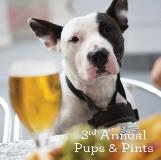 Pups and Pints Website Event Square_455x452