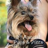 Pups and Pints Social_1080x1080_v23